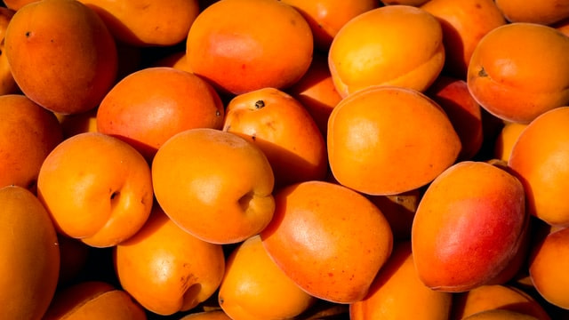 apricot benifits
